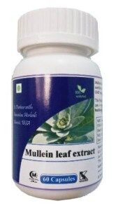 Hawaiian herbal mullein leaf extract capsule