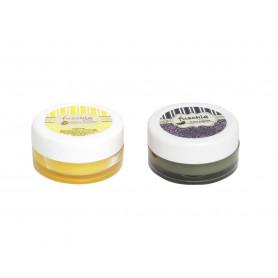 Fuschia – Alphonso & Black currant Lip Balm Combo 16gm