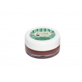 Fuschia – Choco Butter Lip Balm 8gm