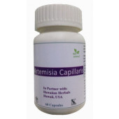 Hawaiian herbal artemisia capillaris capsule