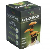 Nature Sure™ Ganoderma LingZhi Reishi Mushroom Capsules - for Stamina & Endurance - 1 Pack (60 Capsules)