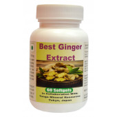 Tonga Herbs Best Ginger Extract Softgel - 60 Softgels (Buy Any Supplement Get The Same 60ml Drops Free)
