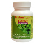Tonga Herbs Brahmi Leaf Extract Softgel - 60 Softgels (Buy Any Supplement Get The Same 60ml Drops Free)