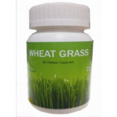 Hawaiian herbal wheat grass capsule-Get 1 same Drops Free